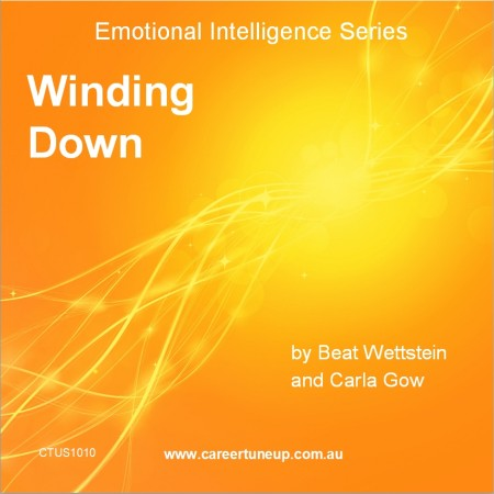 Emotional Intelligence Series - Winding Down